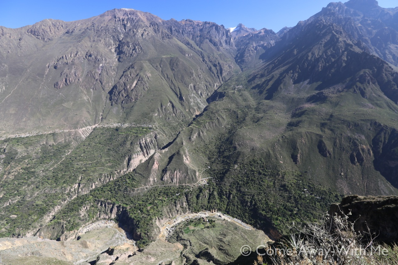 Colca canyon from Cabanaconde side. Look at the trails. Tapay is the little grey T/X on the other side, quite high up.