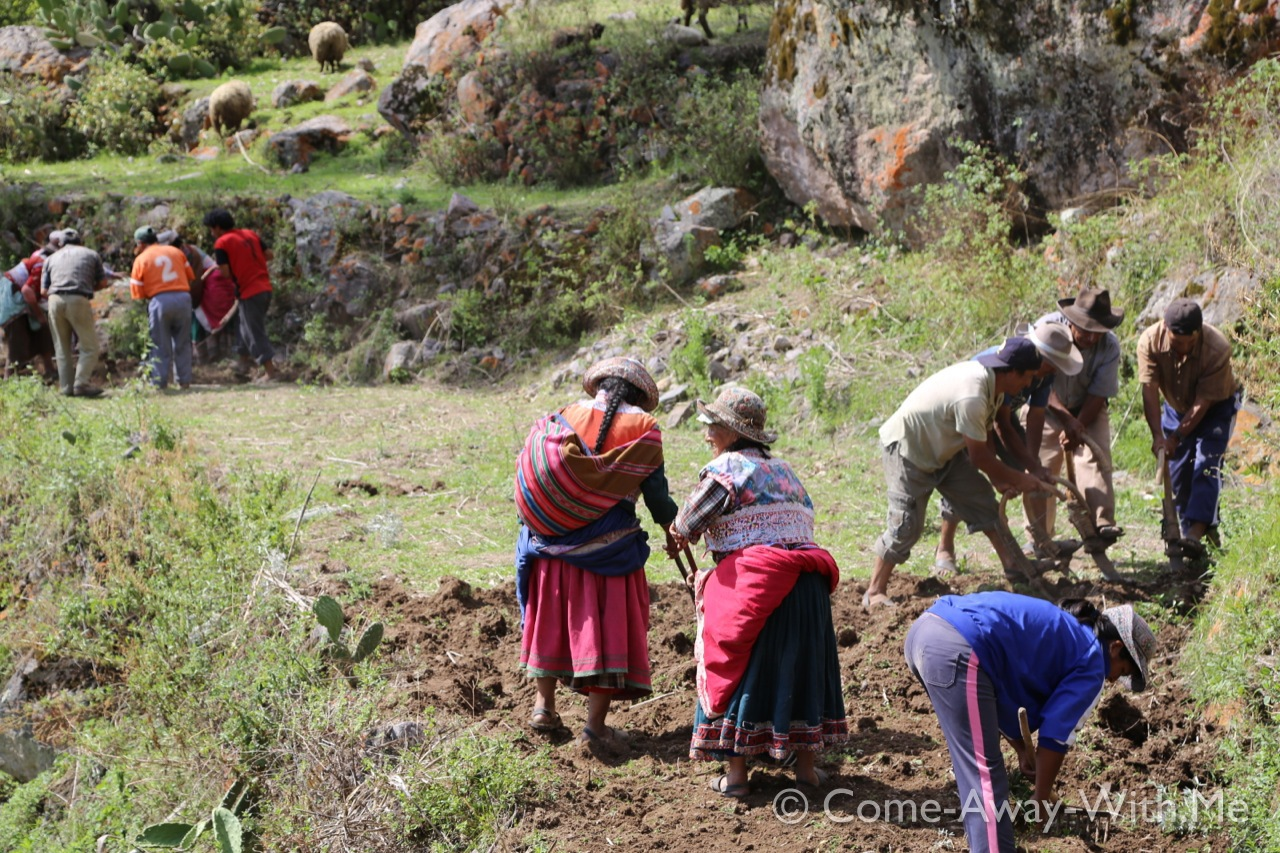 Tapay's villagers working in their fields